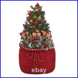 24 BAG WITH LIGHTED TREE AND CARDINALS Raz Imports CHRISTMAS 4015548 NEW Wow