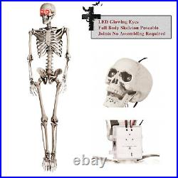 3/5.6FT Halloween Poseable Life Size Human Skeleton Halloween Decor Party Prop