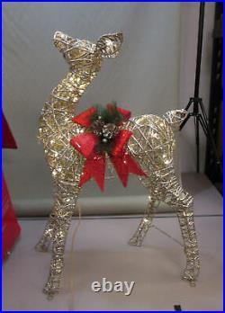 3 Piece Lighted Reindeer Family Deer Buck Doe Outdoor Christmas Yard Decor