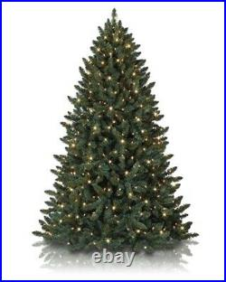 Balsam Spruce Christmas Tree