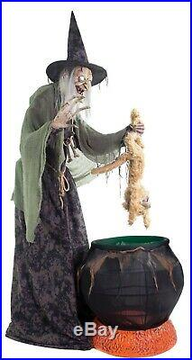Life Size ANIMATED CAT-TASTROPHE WITCH Halloween Haunted House Prop Decoration