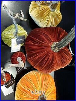 NWT Lot 6 Hot Skwash Velvet Pumpkins Halloween Thanksgiving holiday
