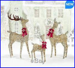 Outdoor Christmas 3 Reindeer Family Set of 3 with LED Lights 650 LED Lights Xmas