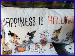 Pottery Barn Kids Snoopy Sheet Set Full Happiness Is Halloween Pillow Peanuts