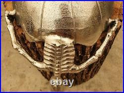 Silver Aluminum Skeletons Rectangular Serving Bowl Halloween Candy Dish