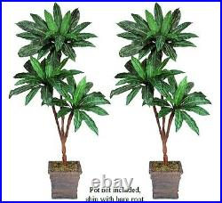 Two 6' Bird Nest Triple Artificial Palm Tree Silk Plants, with No Pot